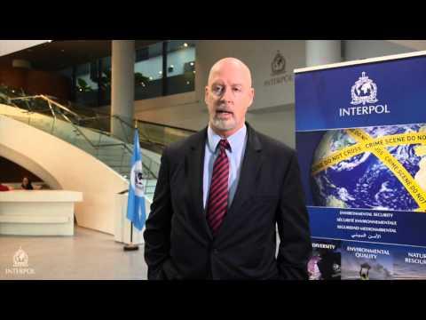 J. Chris Warrener, Deputy Assistant Director, Criminal Investigative Division, FBI