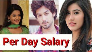 Per Day Salary of Thapki Pyar Ki Actors