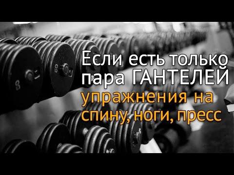 Упражнения с гантелями дома: спина, ноги, пресс