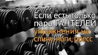 Упражнения с гантелями дома: спина, ноги, пресс(Часто бывает, что дома есть только пара гантелей. Что можно с ними делать, какие упражнения выполнять на..., 2015-11-19T08:00:00.000Z)