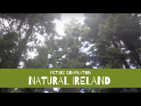 Natural Ireland - Picture Compilation