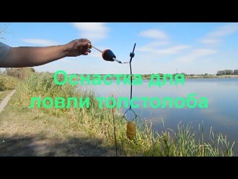 Оснастка для ловли толстолоба 2. - YouTube
