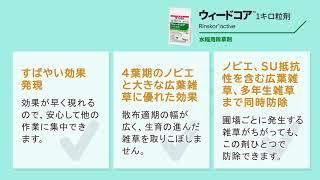 新規水稲用中後期除草剤 ウィードコア™1キロ粒剤の除草効果