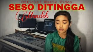 Download Lagu Seso Ditingga Mandeh - Silva Hayati || Lirik [ Official Musik Video ] mp3