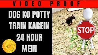 Potty train your dog in 24 Hours with video proof (Hindi)