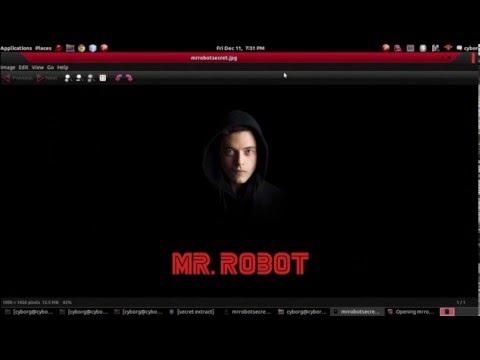 Cyborg Hawk Linux - Steganography   Mr Robot in Real Life