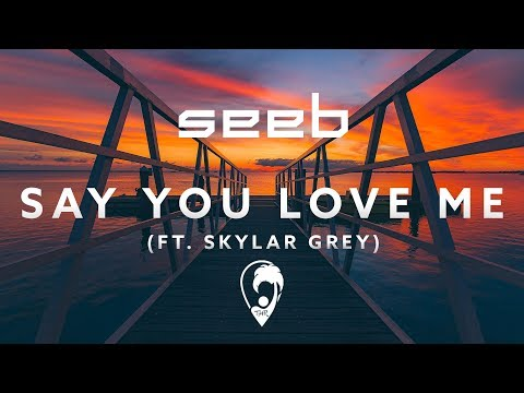 Seeb - Say You Love Me (ft. Skylar Grey)