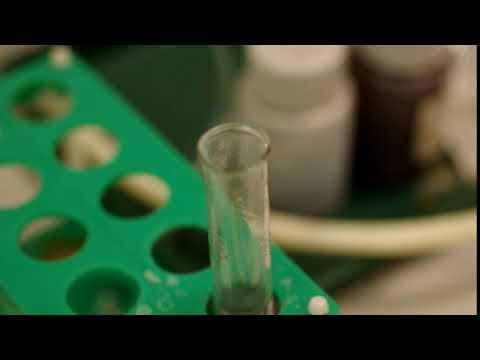 Реакция алюминия со щёлочью / Reaction Of Aluminium With Alkali