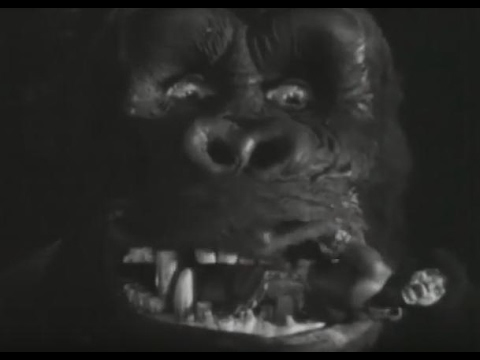 king kong 1933 essay Instructions for this paper you are to view an american horror film produced between 1932 and 1939 the film that you will be viewing is king kong (1933) directed by.