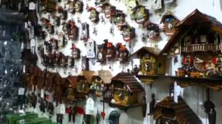 What A Lot Of Cuckoo Clocks!