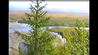 Чукотская природа. Архив записи начала 90ых годов