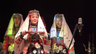 Kina gecesi. Turkų vestuvinių apeigų pasirodymas