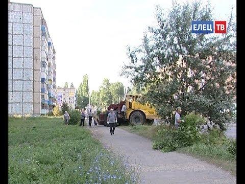 В Ельце продолжаются работы по благоустройству: на ул. Пушкина вырубали заросли американского клена