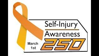 Sim Racers For Mental Health   The Self Injury Awareness 250 at Daytona