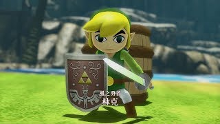 Hyrule Warriors (Nintendo Switch) - Toon Link