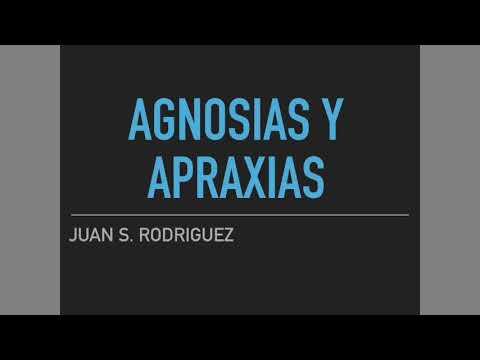 Agnosias y apraxias. ¡Todo lo que debes saber!
