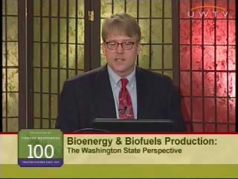Bioenergy and Biofuels: An Overview of Bioenergy and Biofuels Production