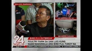 24 Oras: Poultry farm sa San Luis kung saan nagsimula ang bird flu, tukoy na