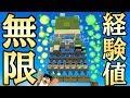Download lagu 【カズクラ2020】サボテンで経験値無限キタ!!マイクラ実況 PART45