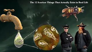 Scariest Things That Actually Exist in Real Life