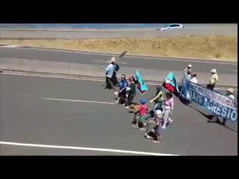 Marcha impulsada por la APDR para pedir que Ence deje la ría