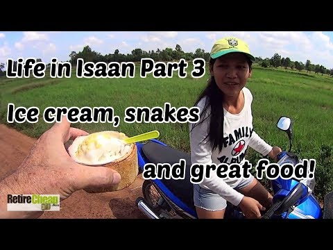 TImyT 028 Life and Costs in Isaan Thailand Pt 3 🍦
