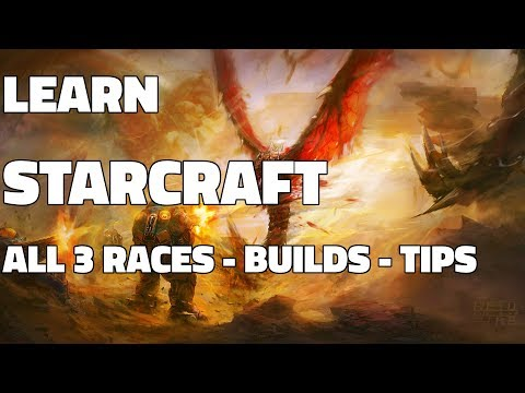 Learn Starcraft Hour #1 - All Races, Build Orders, Commentary/Tips (Updated LOTV)