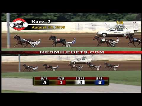Red Mile Racetrack Race 2 8-13-2016