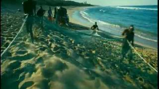 WILD OCEAN Film Trailer (IMAX)