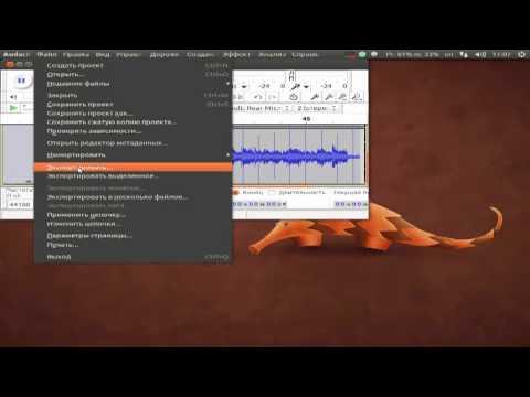 Ubuntu - извлечение аудио из видео в Audacity