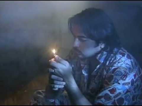 solteros sin compromiso cancion cuando fuman
