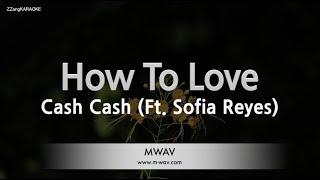 Cash Cash-How To Love (Ft. Sofia Reyes) (Melody) [ZZang KARAOKE]