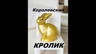 Королевский кролик. Рекс. Редкие породы кроликов.