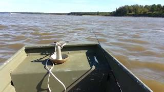 10 Ft Tracker Jon Boat Flat Bottom With A 3.5 Hp 2013 4 Stroke Outboard