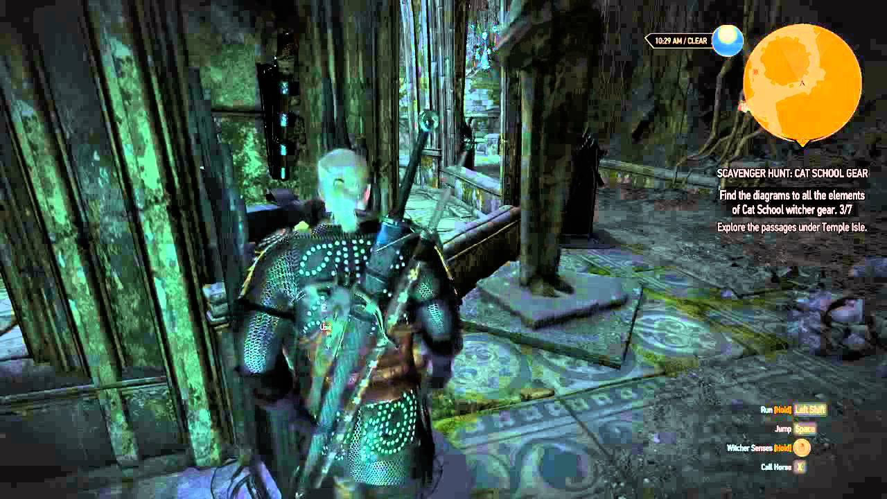 The Witcher  Temple Isle Cat School