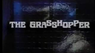 The Grasshopper (1969) trailer, Jacqueline Bisset