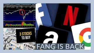 THE STOCK MARKET IS GOING TO BE IMPORTANT TOMORROW - My Watchlist - 3 STOCKS TO BUY NOW!