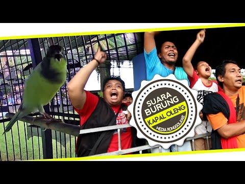 Download Lagu BRANDY WATCH : Kenari KAPAL OLENG Ngedur Panjang Goyang Piala Nirina