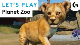 BEAR NECESSITIES - Planet Zoo let's play
