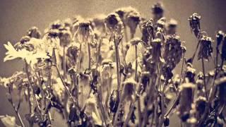 thehappymask - Dead Flowers