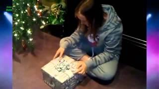 Котята в подарок на Рождество 2