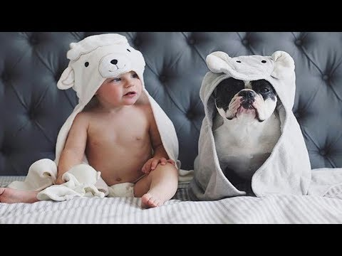 Can't Help Laughing With The Baby's Funny Moments With Pets | Cute Dogs and Cats Compilation