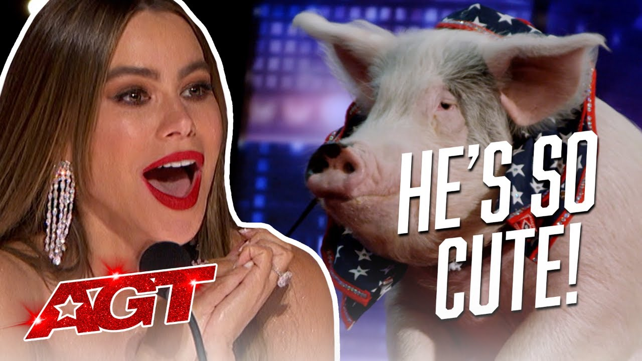 The Funniest and Silliest Auditions That Will Make You Laugh! - America's Got Talent 2021