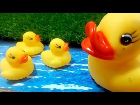 البطة لولو واخواتها / العاب سيمبا سون / cute duckling and his brothers