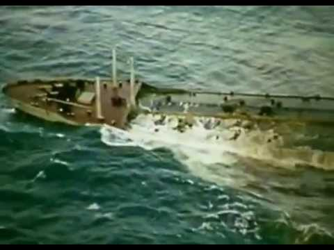Torrey Canyon Oil Spill Uniliver 1967