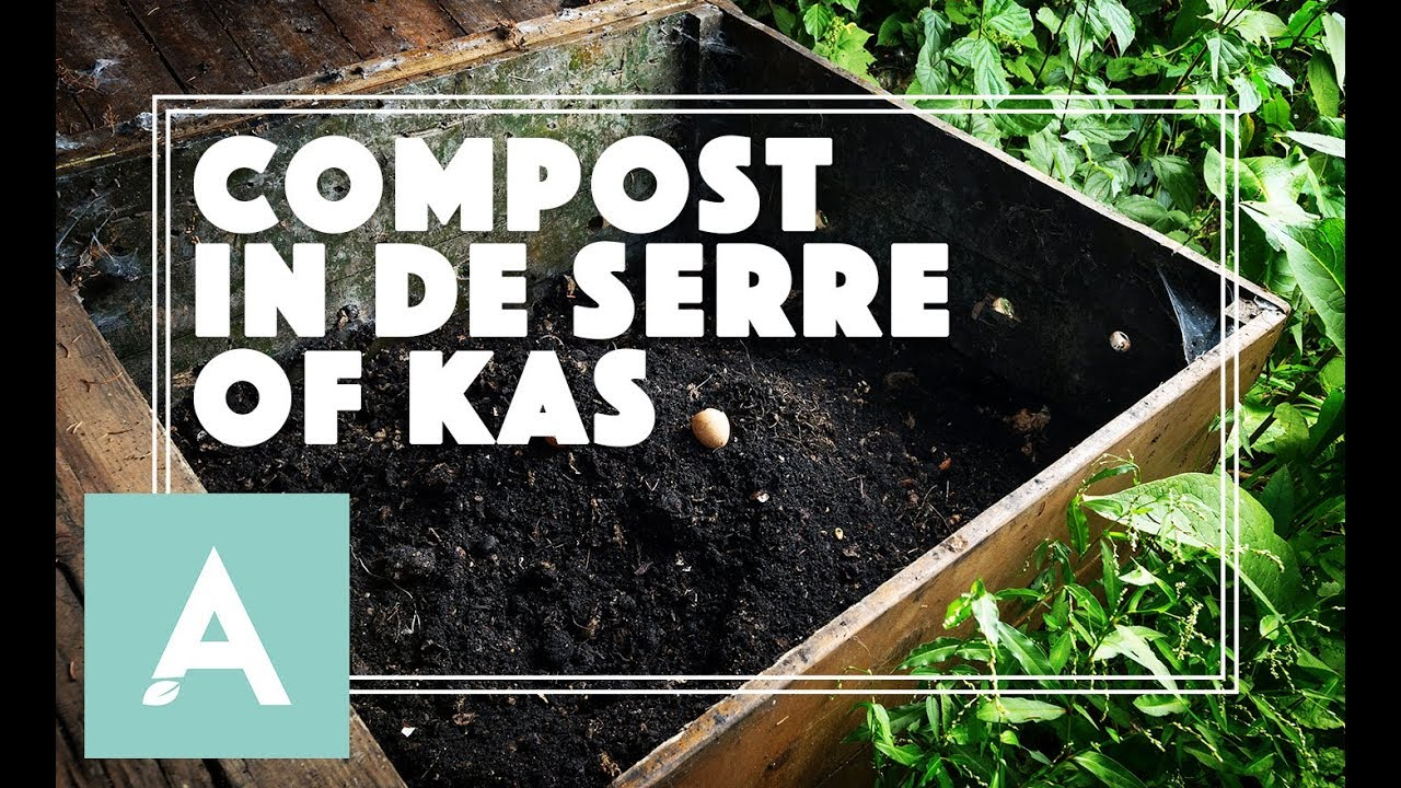 Handson Kweekkas Serre Compost In De Serre Of Kas Grow Cook Eat 64
