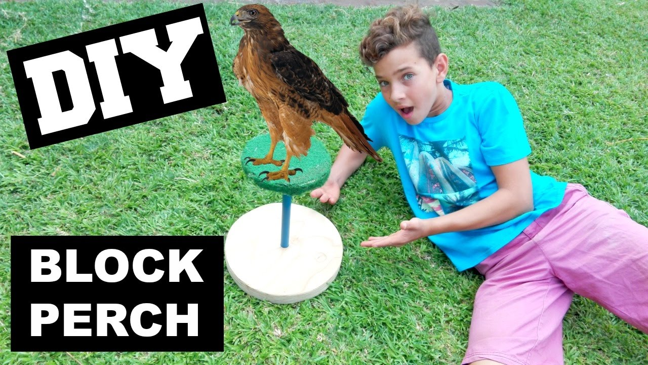"""Falconry Block Perches 6"""" With Astro Turf"""