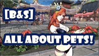 [Blade and Soul] Pet Upgrade Guide!