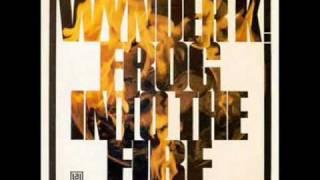 Wynder K Frog  - Harpsichord Shuffle