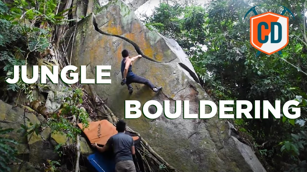 Hidden In The Jungle THEY Found This...| Climbing Daily Ep.1847